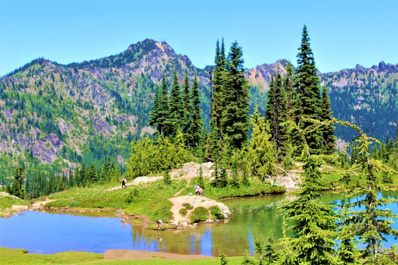 Small Lake on Chinook Pass PCT