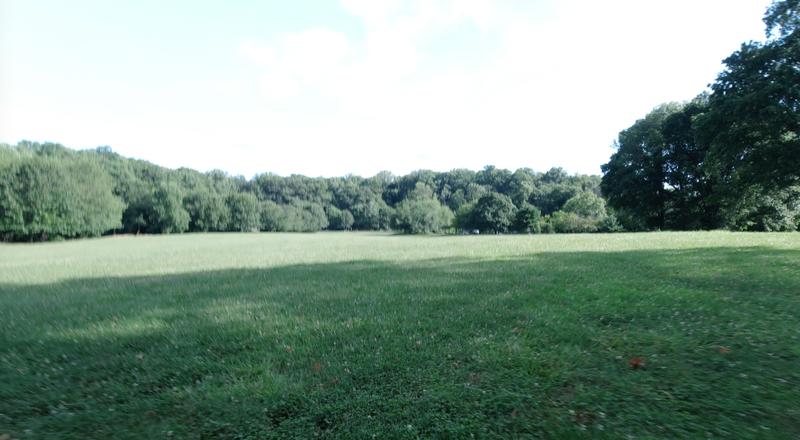 Grassy field - 5k Race Course start