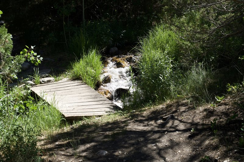 The trail crosses Lehman Creek via a small wooden plank bridge before emerging at the entrance to the Upper Lehman Creek Campground.
