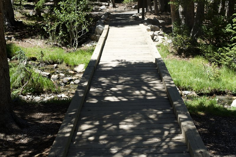 The trail crosses Lehman Creek right after leaving the parking lot.