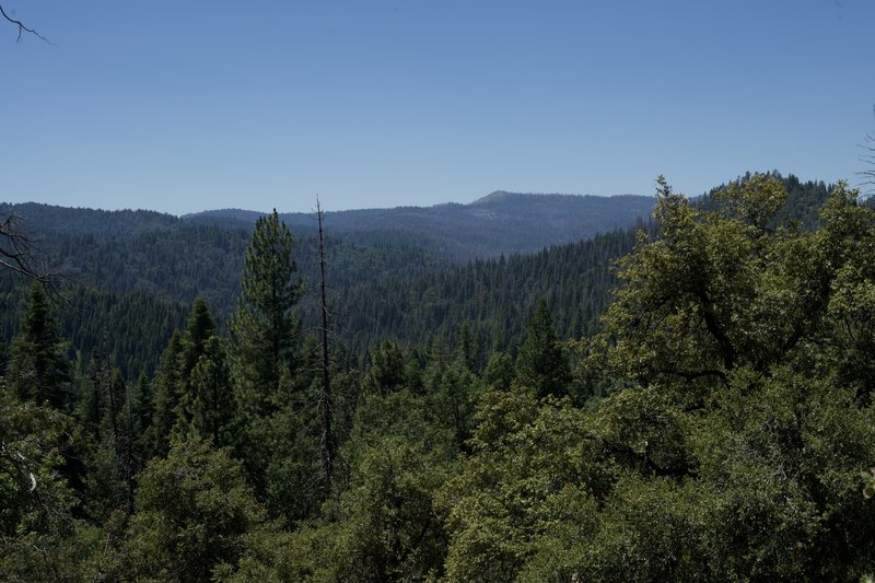 While there are not many sweeping views along this trail, sometimes it opens up and you can look out across the forests that make up Yosemite National Park and the surrounding area.