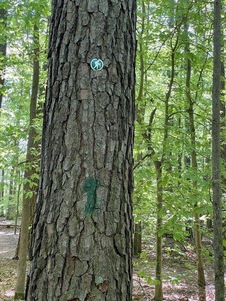 Trail marker for Trillium Trail