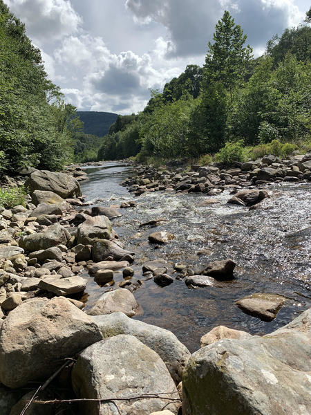 Crossing Red Creek in Dolly Sods.