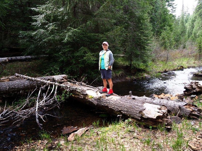 Logs replace a bridge over Beaver Dam Creek near Beaver Dam Campground.