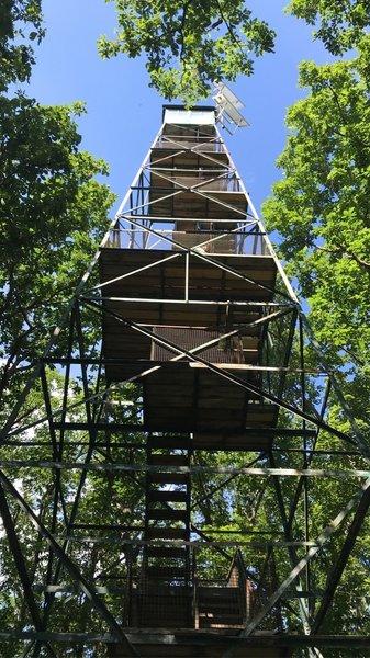 Fire Tower #9