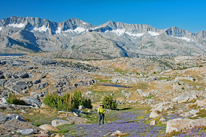 Rick from Sonoma climbing Puppet Pass with Glacier Divide in the background. Mesa Lake is on the extreme left.