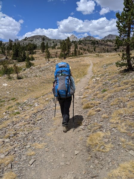 Heading into the Hoover Wilderness