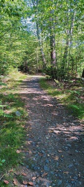 Sterling Lake Trail