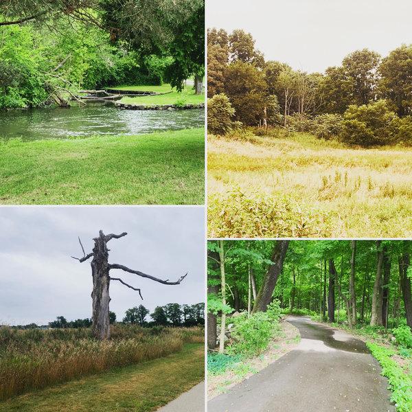 Scenes along the Albion River Bike Trail
