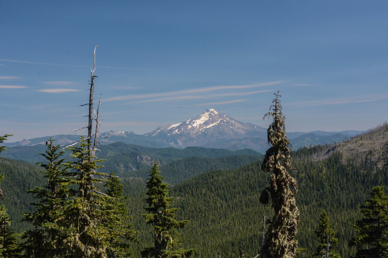 Mount Jefferson from a nice viewpoint just east of the Pansy Creek Trail