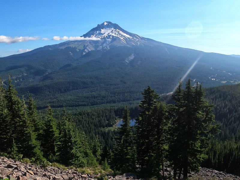 Mt. Hood from the end of trail