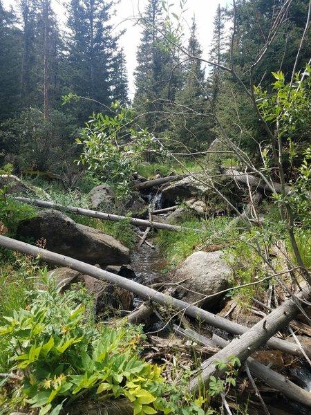 Trail follows the flowing stream