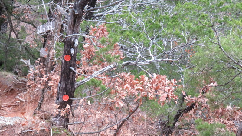 Many old tree markers are still intact along the way , usually to mark a turn in the trail .