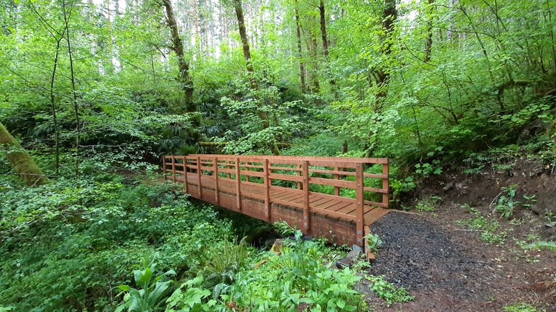 A wooden footbridge over a small creek on the Wilson River Trail.