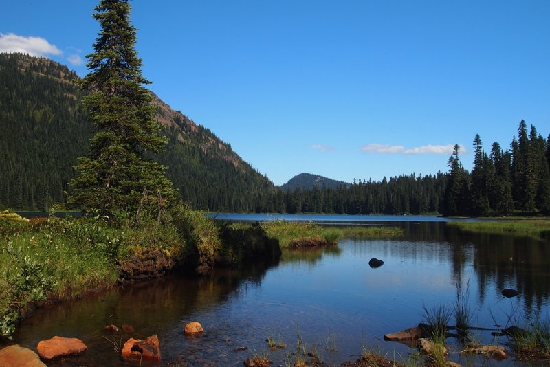 Dewey Lake from west shore. Hwy 410 to Dewey Lake makes a great day hike alternative to the Naches Loop if you have a dog since dogs are permitted only on the PCT portion.