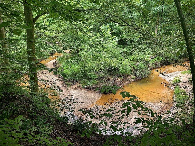 Water scene along the trail.