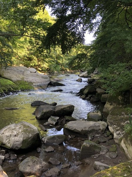 Slippery Rock Creek from Kildoo Trail.