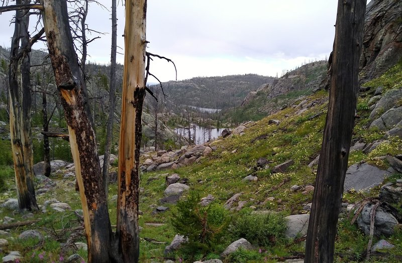 Lake Christina is in the distance, with Perry Lake closer by when hiking high on Lake Ethel Trail.
