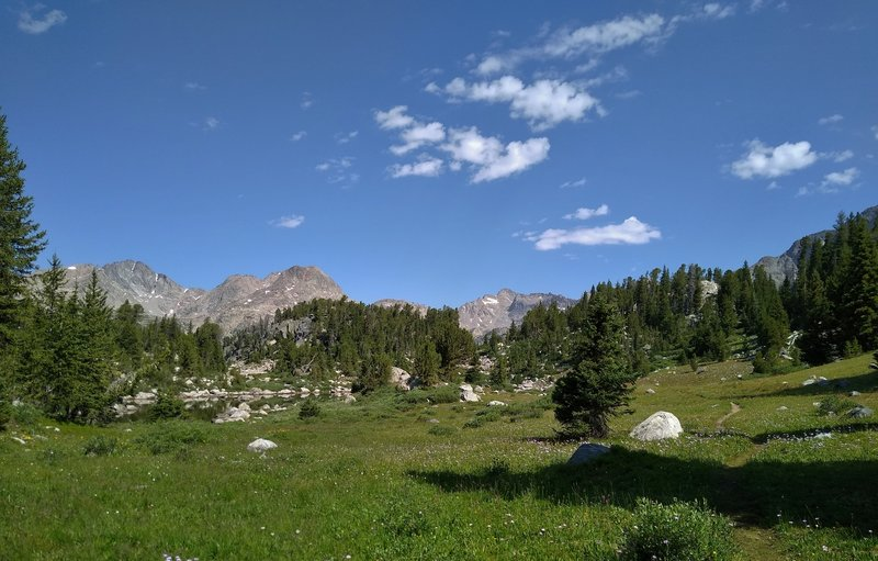 Mt. Lester's two peaks (left) appear in the distance above a high meadow on the way to the second Cook Lake.