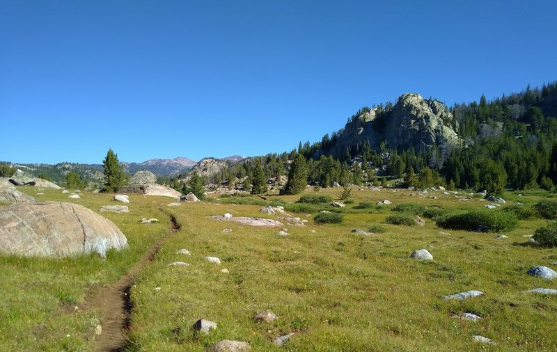 Beautiful open, rocky meadows on the east side of Chain Lakes along Highline Trail, on a sunny July morning.