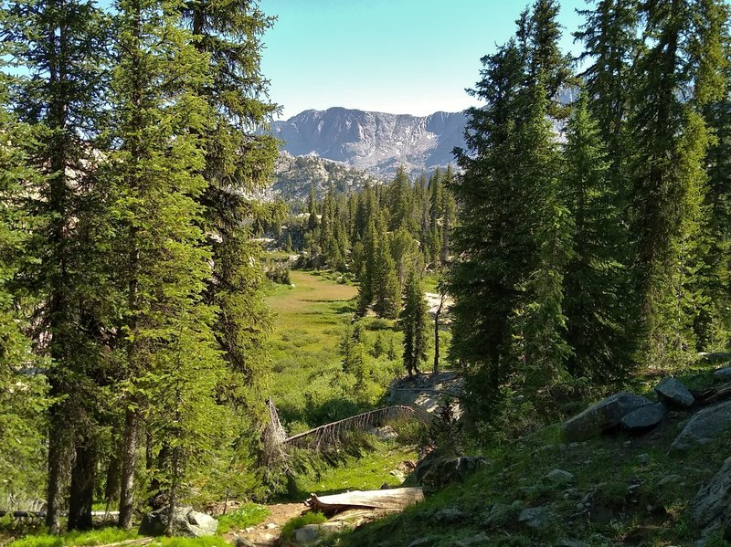 Highline Trail descends into a small meadow below near Pole Creek.