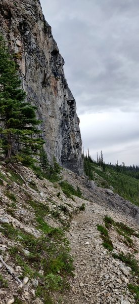 The trail between Yoho Pass and Burgess pass crosses under cliffs and through shale beds. The famous Burgess Shale fossil quarries are near here but entrance is stricly forbidden.