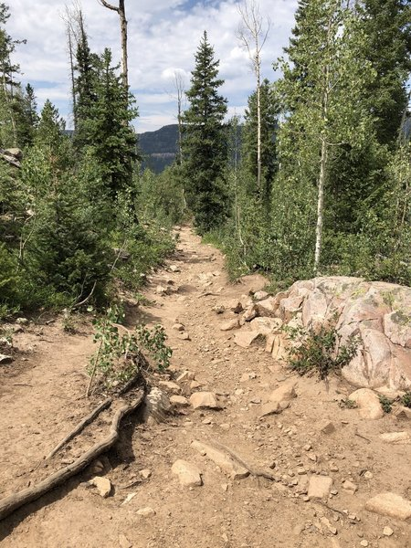 Trail to Potato Lake