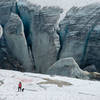 A hiker and her dog stand in front of the Illecillewaet Glacier.