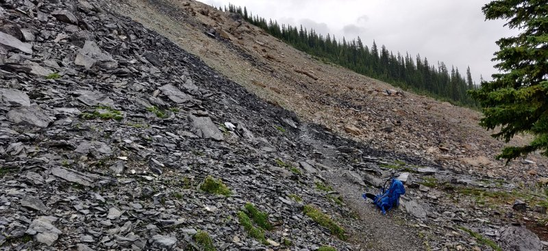 The Burgess Shale, site of one of the most important fossil discoveries in the world. Unguided groups cannot venture higher in the fossil quarries. Stay on the trail.