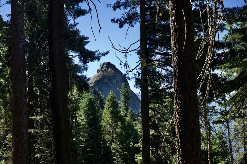 Moro Rock can be seen through the trees from the trail.