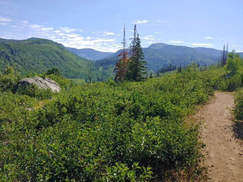 View along trail to northwest