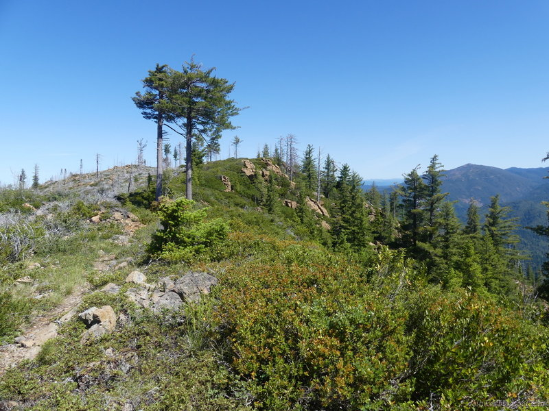 Descending from Summit Valley Lookout along the ridges.