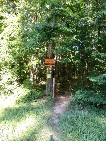 Sign stating, there is 60 miles of trails to Falls Lake Dam.
