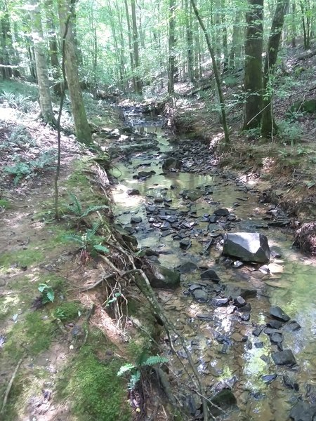 Refreshing creek
