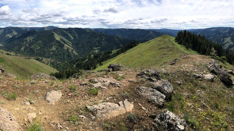 Just below the Zig Zag Spring Trailhead parking looking south.