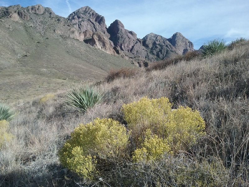 View of the Organ Mountains from the trail.