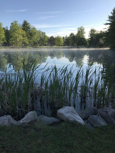 Pond at Hanson Hills.