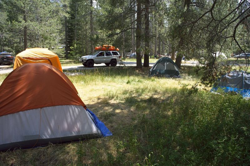 Public camping along the Donner State Park Trail