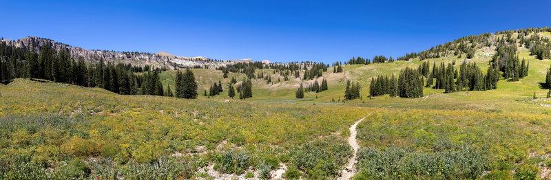 Meadows around Middle Fork Granite Creek.