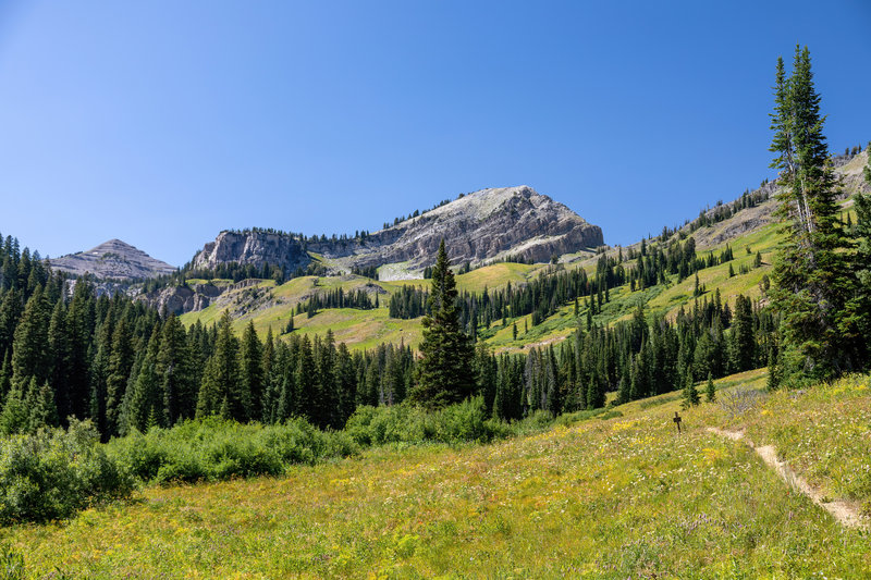 Housetop Mountain from Granite Canyon.