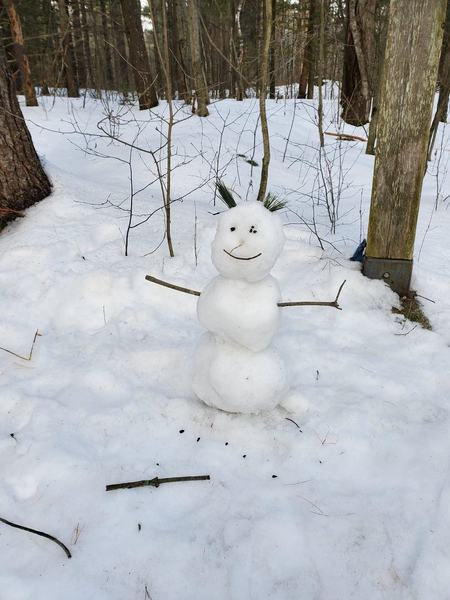 A snowman guarding the fork in the trail.