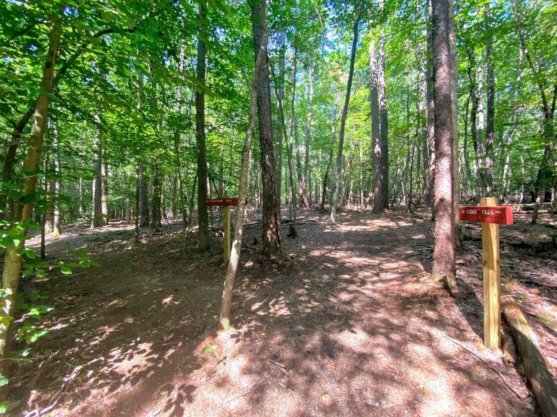 Start of the Fieldstone Trail.