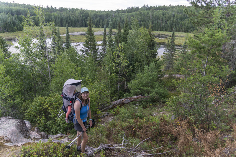 Beaver Pond Overlook