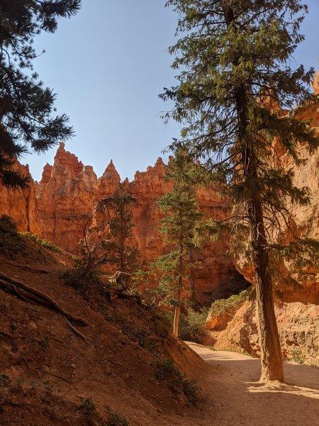 Navajo Loop, early morning.