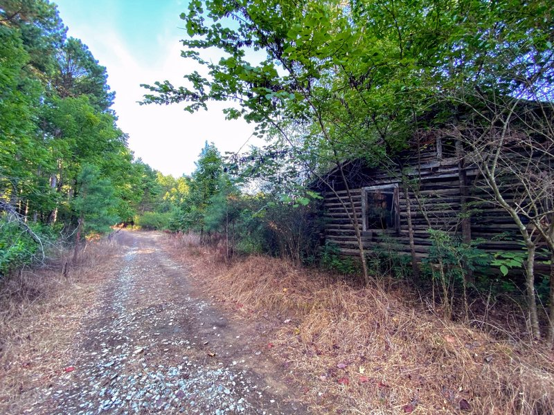 Derelict log cabin off the road
