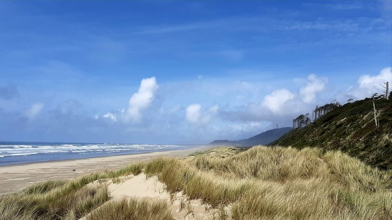 Sand dunes on an undeveloped beach with misty mountains in the distance.