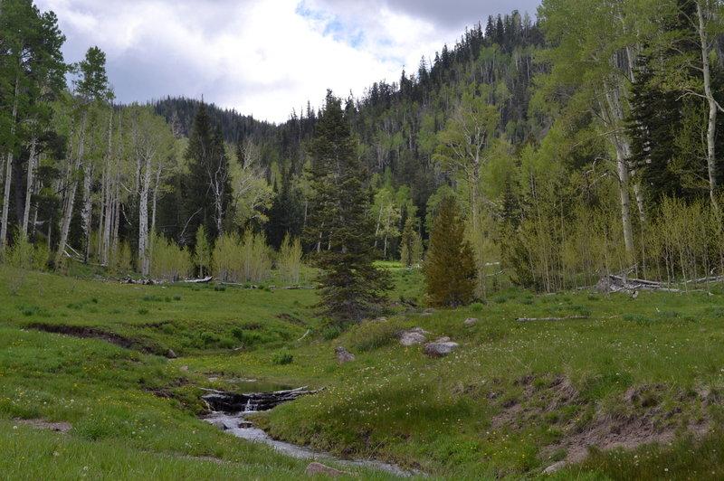 Mill Creek.