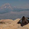 Mount Jefferson slightly obstructed by smoke from the 2020 Lionshead fire and a sleepy dog on top of Marion Mountain.