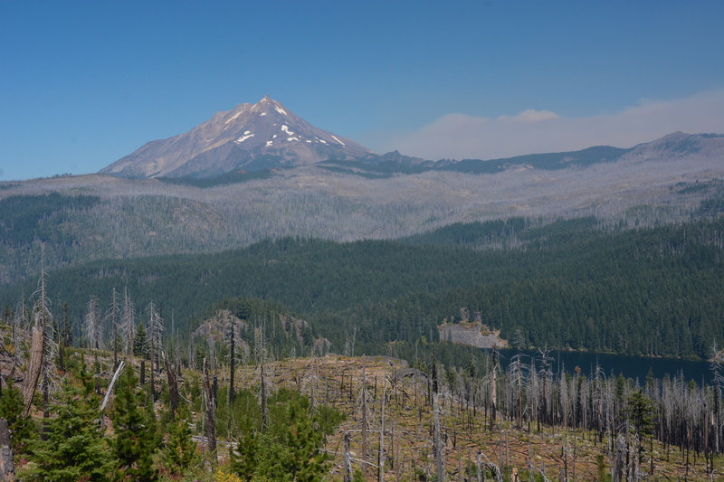 Mount Jefferson, Marion Lake, and smoke from the 2020 Lionshead fire all visible through an older burn area on Pine Ridge Trail.