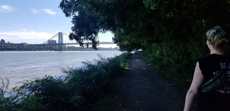 Shore trail at the river's edge. Overhanging shade creates a cool cavernous feel.